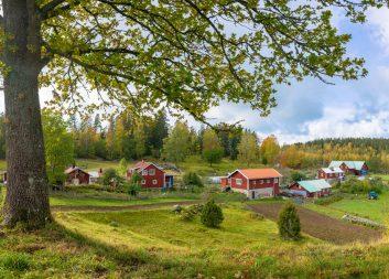 Inspel från Mistra Digital Forest till Smart landsbygd i nationella geodatastrategin