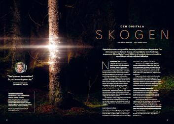 Den digitala skogen