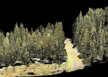 Nya programaktiviteter i Mistra Digital Forest