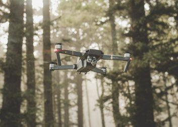 Så digitalt är det svenska skogsbruket – enligt skogsbolagen själva